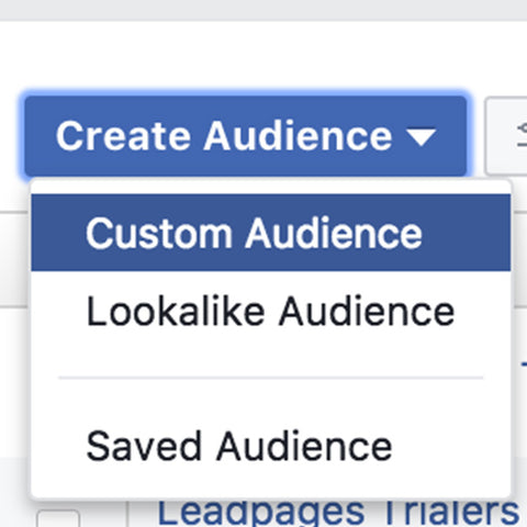 Create A Custom Audience Or LookaLike Audience