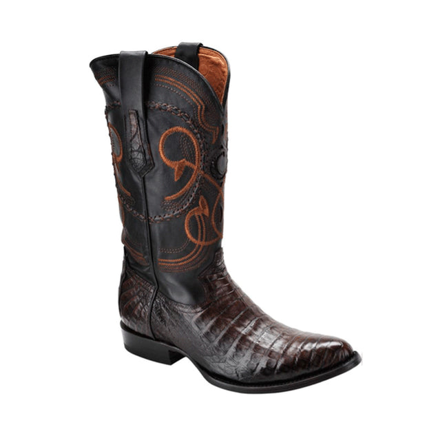 Cuadra Caiman Belly Boots New M2C41FY