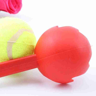 Toy Ball Thrower