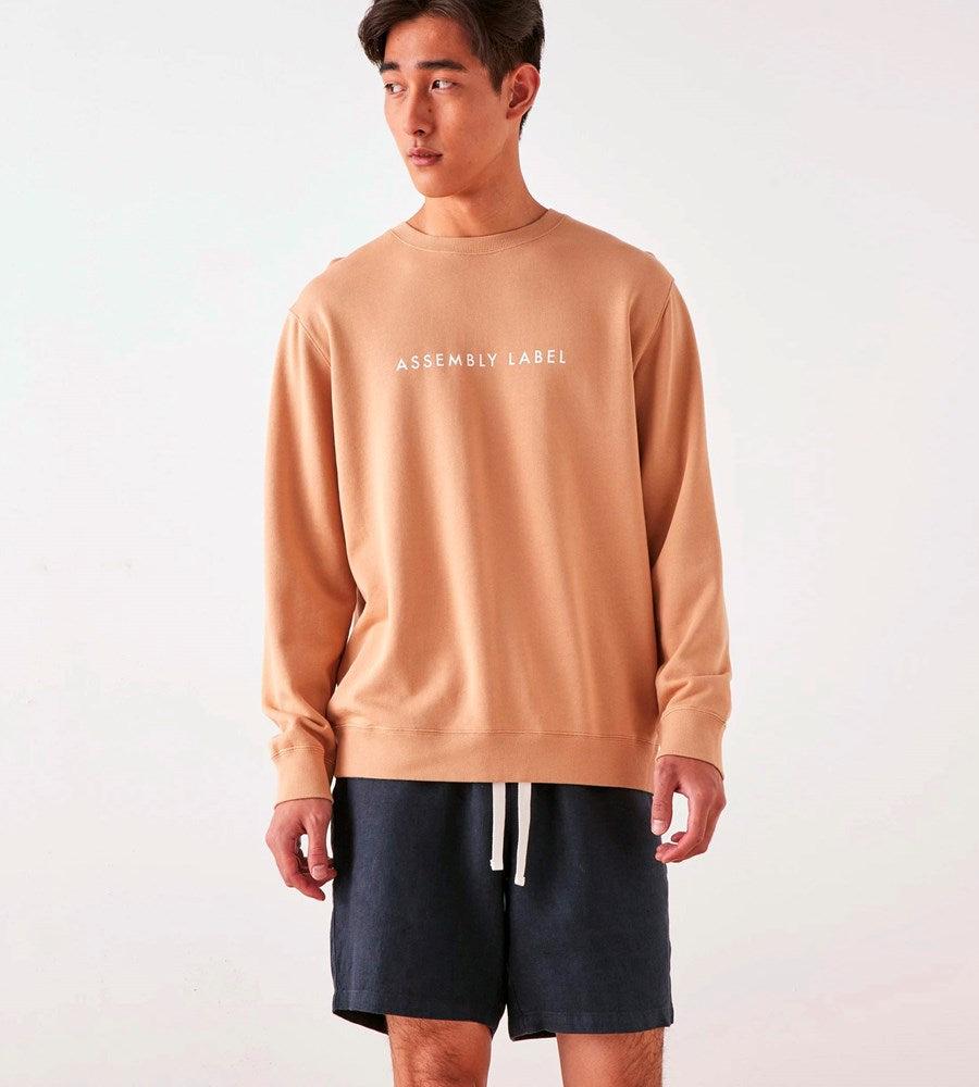 Assembly Label | Men's Logo Fleece Pullover | Taupe / White