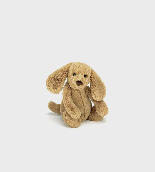 Bashful Puppy | Toffee | Medium