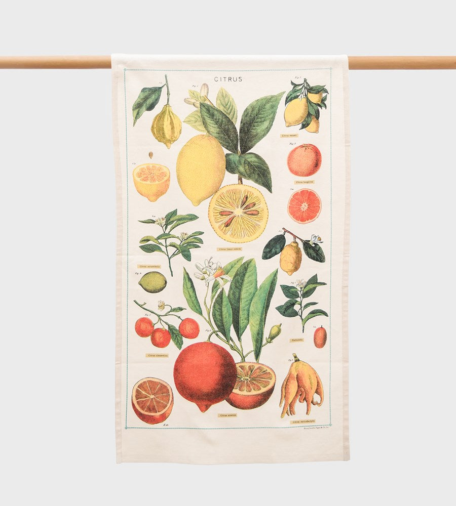 Cavallini | Citrus Tea Towel