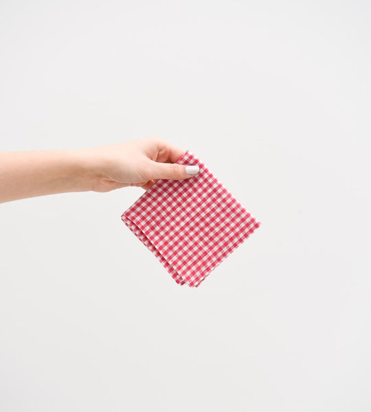 fog linen handkerchief merissa red white check