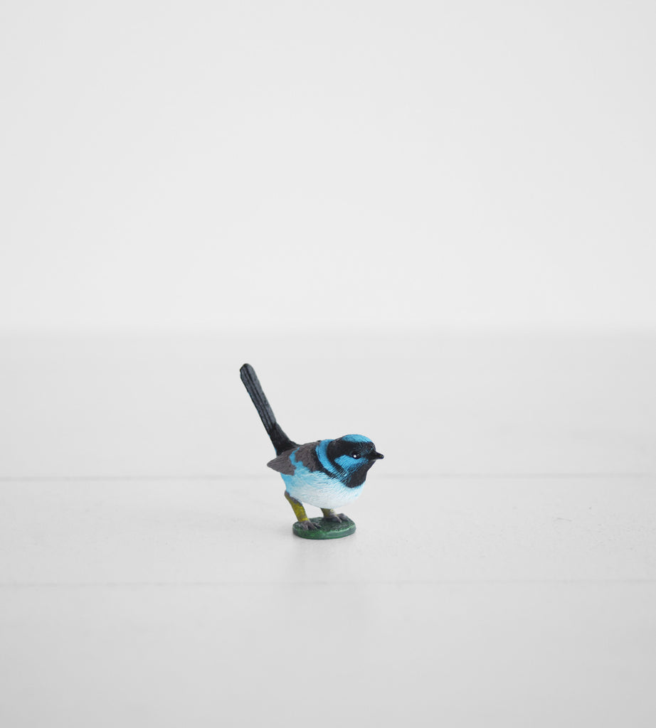 Little Animal | Blue Wren