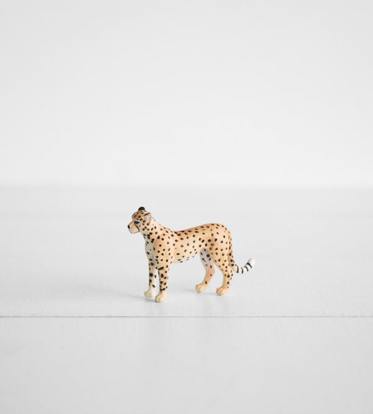 Little Animal | Cheetah