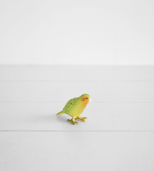 Little Animal | Kakapo