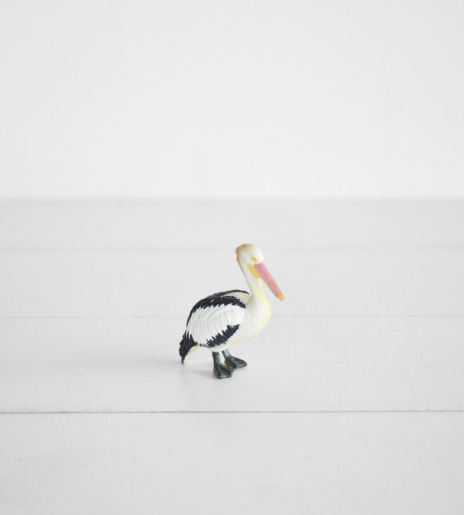 Little Animal | Pelican
