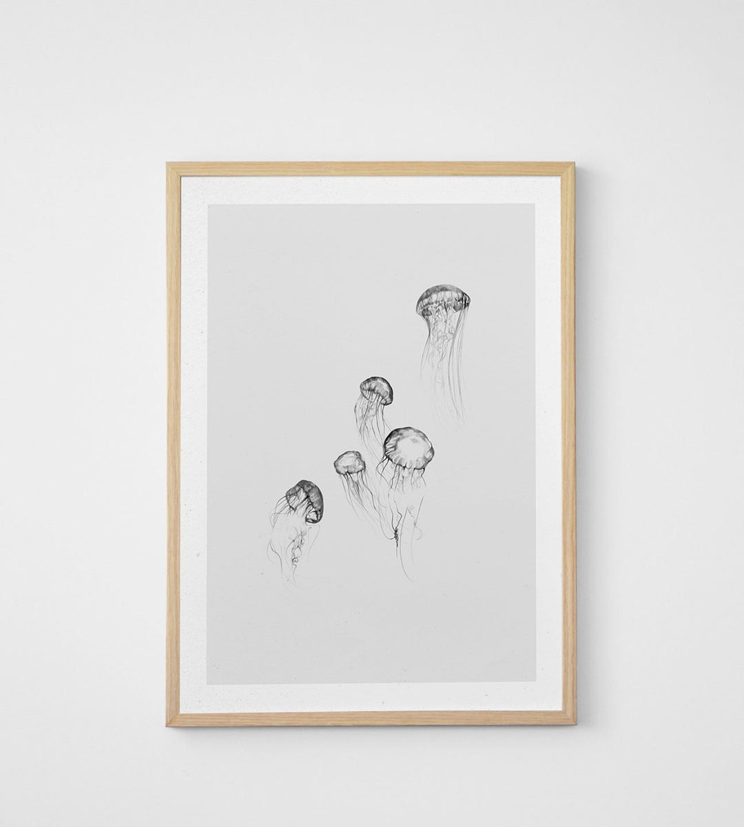 Paper Collective | Jellyfish