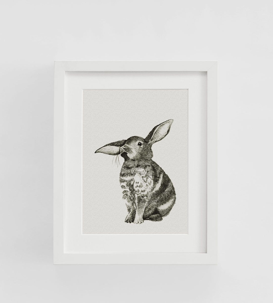 Father Rabbit | Framed Print | Bunny