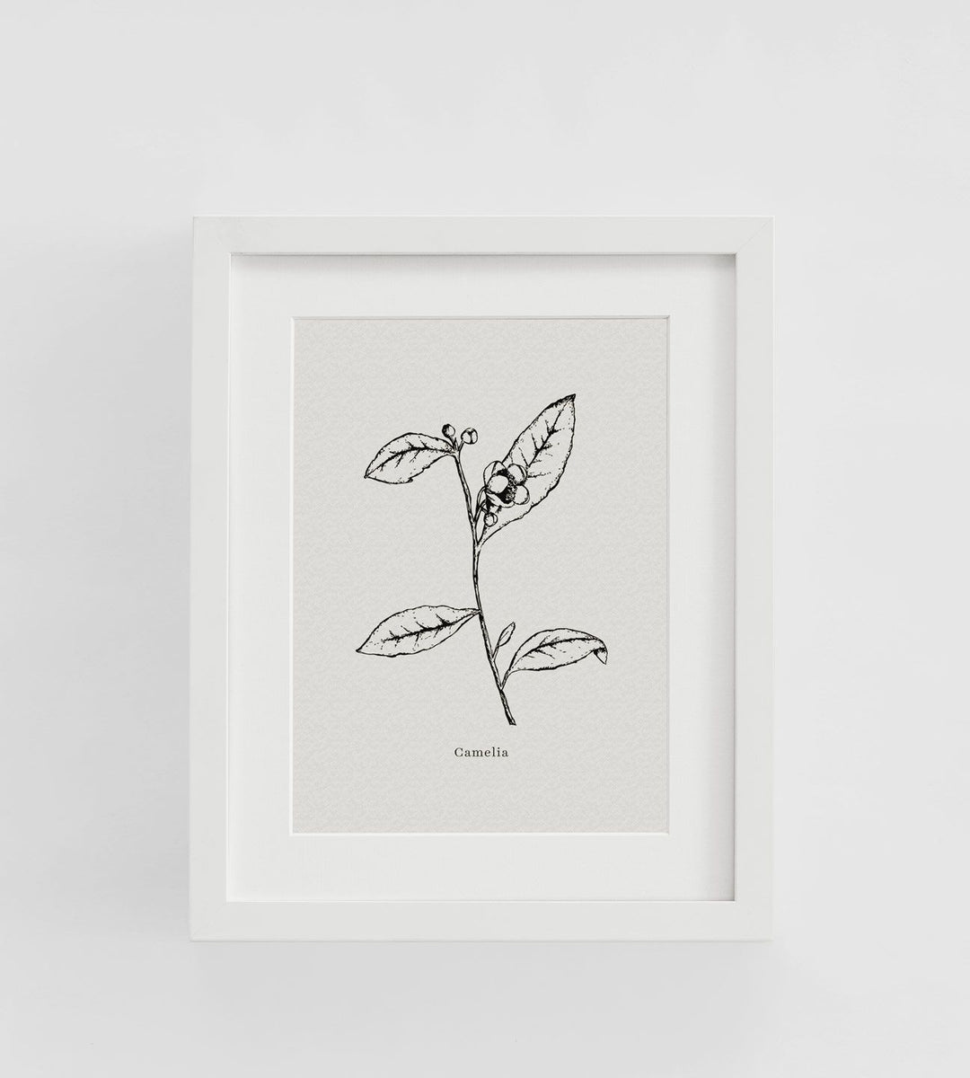 Father Rabbit | Framed Print | Camelia
