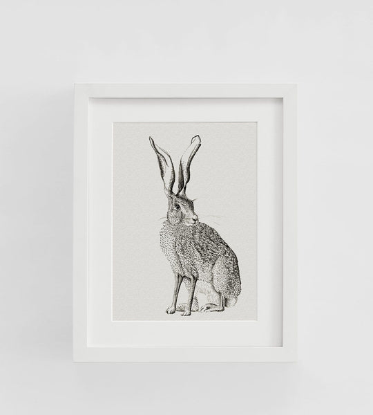 Father Rabbit | Framed Print | Hare