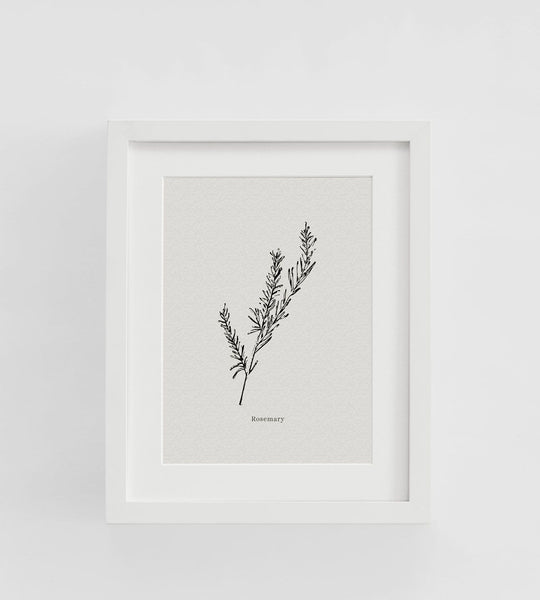 Father Rabbit | Framed Print | Rosemary
