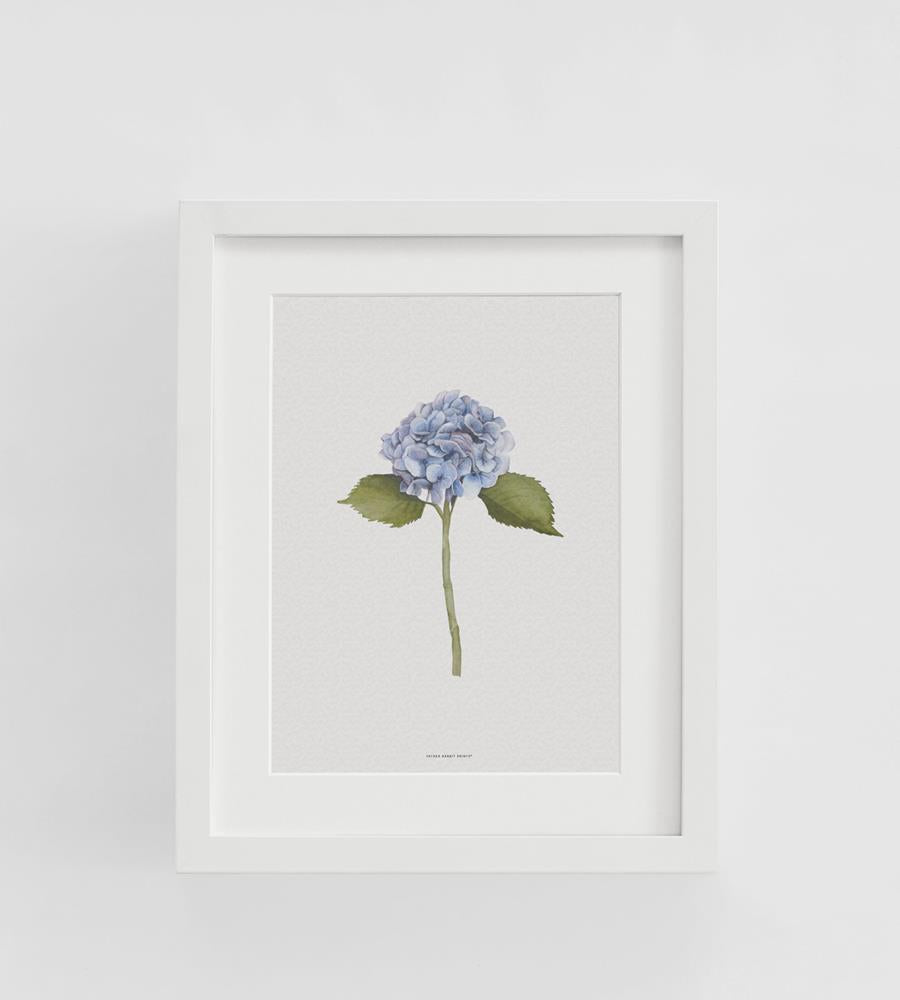 Father Rabbit | Hydrangea Print