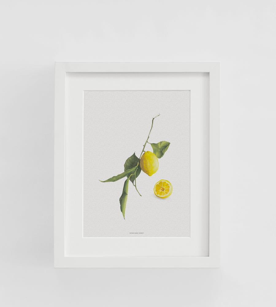 Father Rabbit | Citrine Print