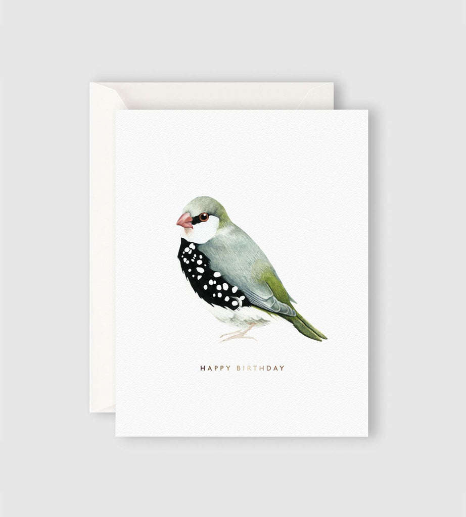 Father Rabbit Stationery | Happy Birthday Bird Card