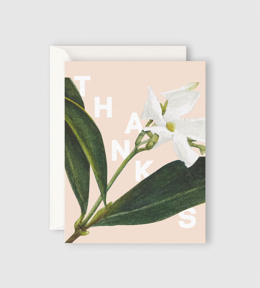 Father Rabbit Stationery | Jasmine Thanks Card