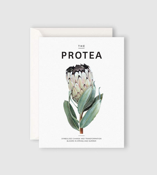 Father Rabbit Stationery | The Protea Card