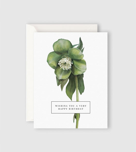 Father Rabbit Stationery | Wishing You a Very Happy Birthday Card