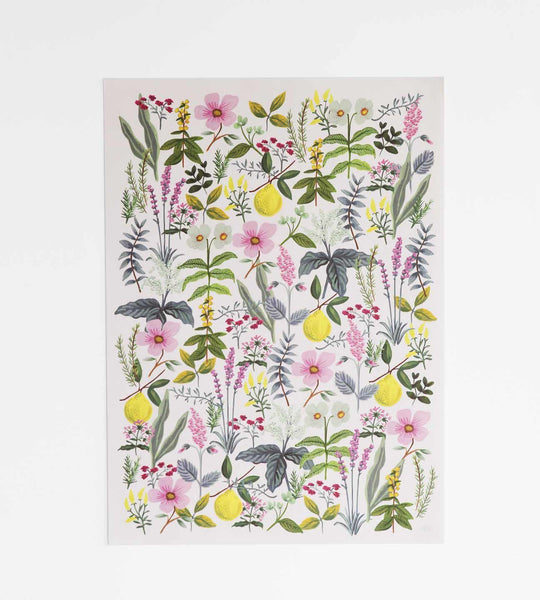 Rifle Paper | Wrapping Sheet | Herb Garden