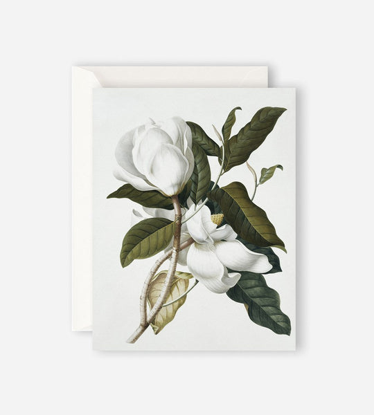 Father Rabbit Stationery | Gardenia Card