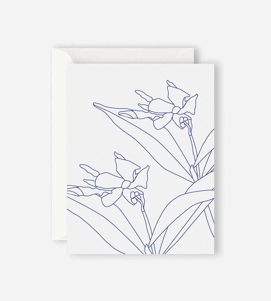 Father Rabbit Stationery Blue Jasmine Card