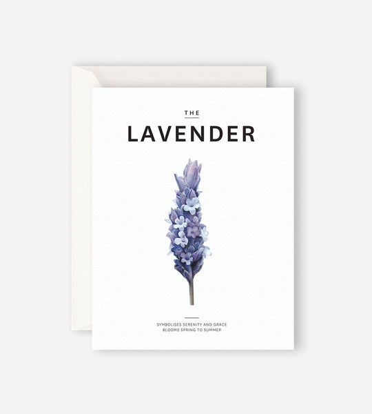 Father Rabbit Stationery | The Lavendar Card