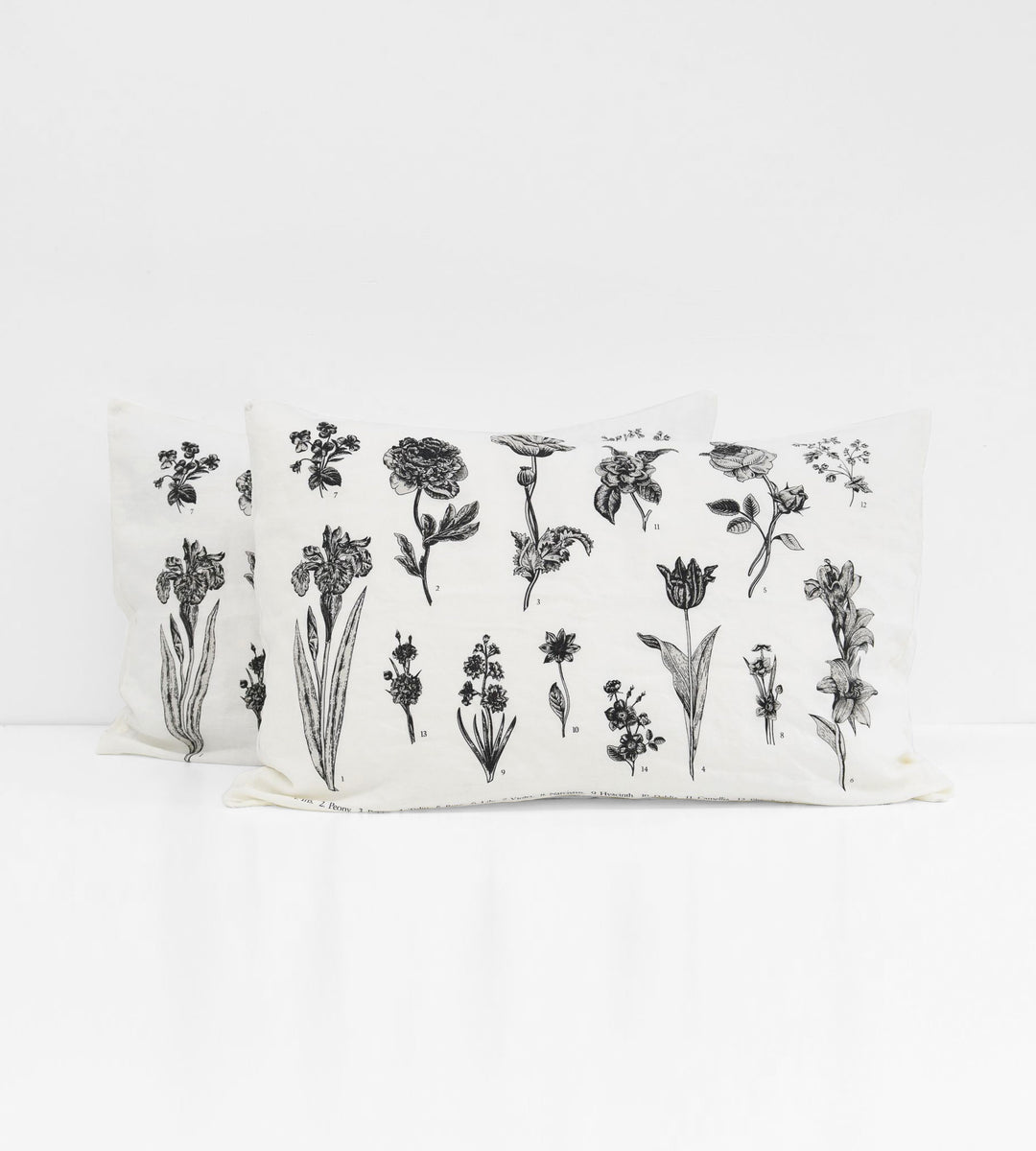 Father Rabbit | Linen Standard Pillowcase Pair | Cream | Vintage Floral