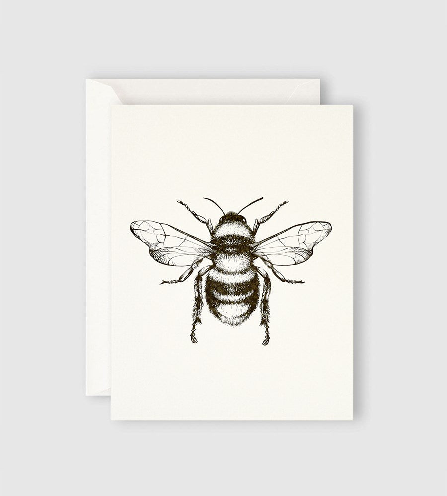 Father Rabbit Stationery | Bumble Bee Card