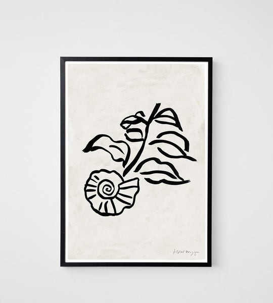 Hotel Magique | When a Shell was a Flower Unframed Print | A3
