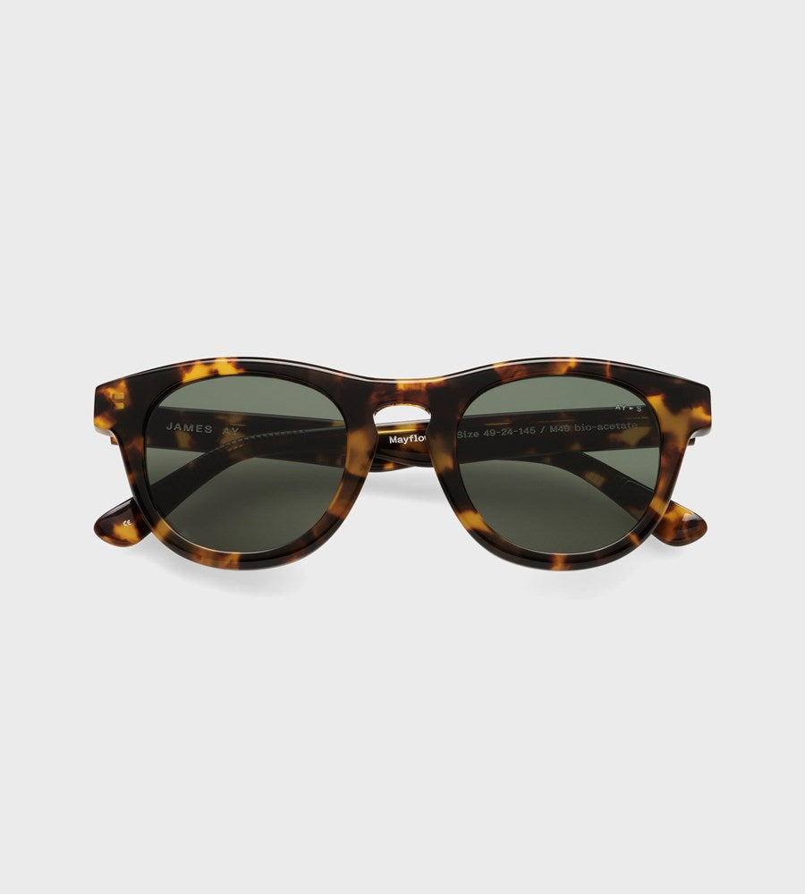 James Ay | Mayflower Sunglasses | Havana