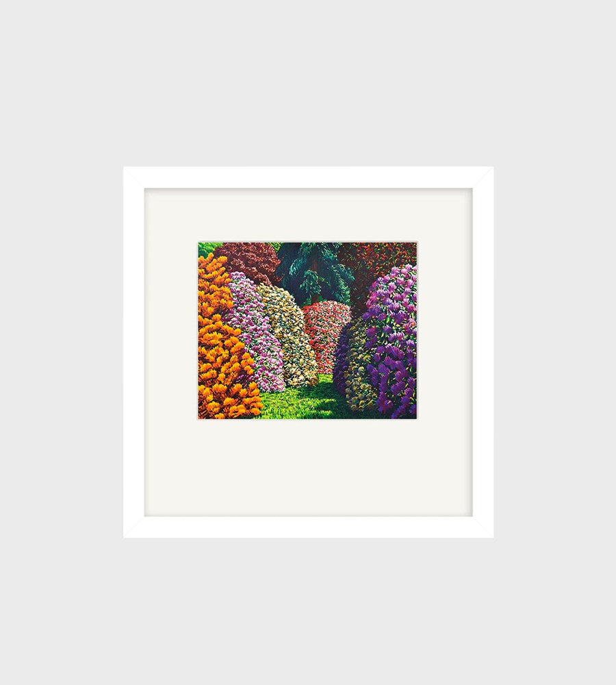 Karl Maughan | Cambridge Small Art Print | Framed | White
