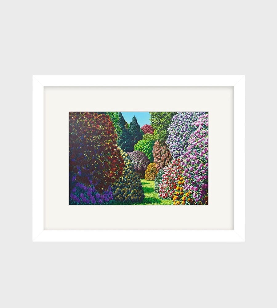 Karl Maughan | Forest Hill Small Art Print | Framed | White