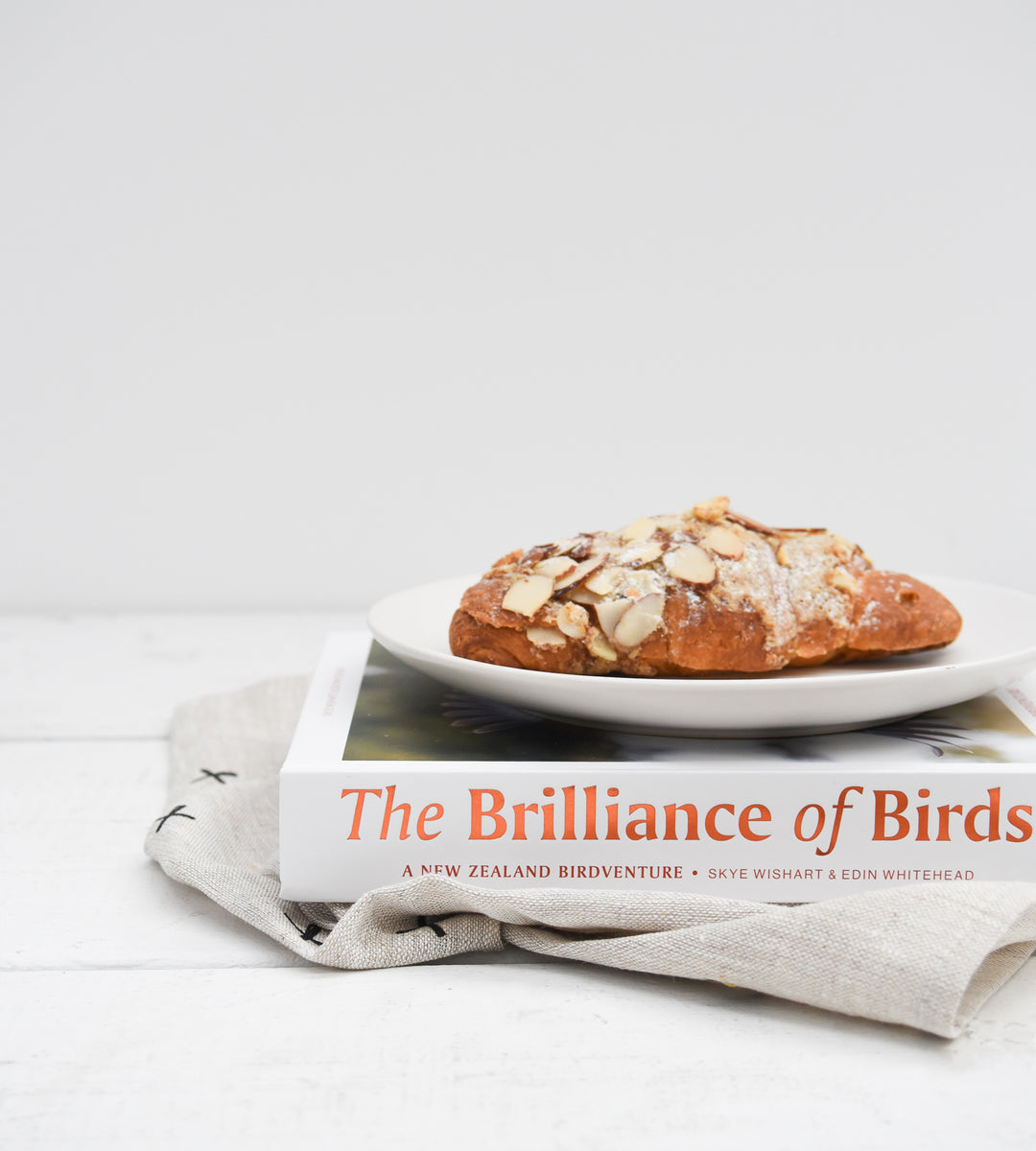 The Brilliance of Birds | by Skye Wishart and Edin Whitehead