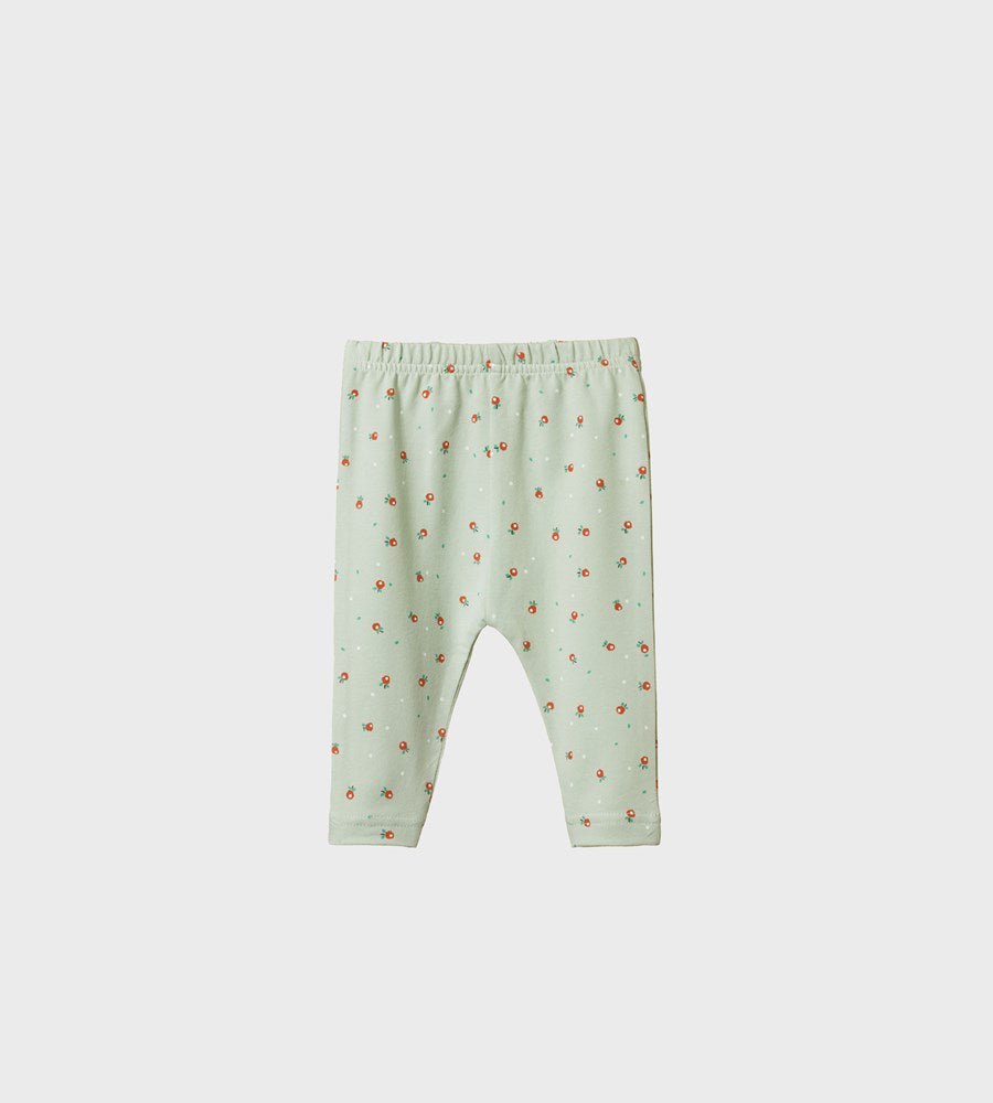 Nature Baby | Baby Leggings | Posey Blossom Print