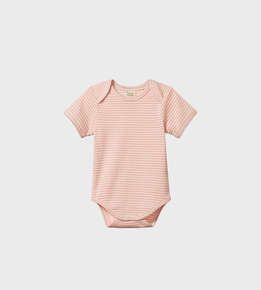 Nature Baby | Short Sleeve Bodysuit | Lily Stripe