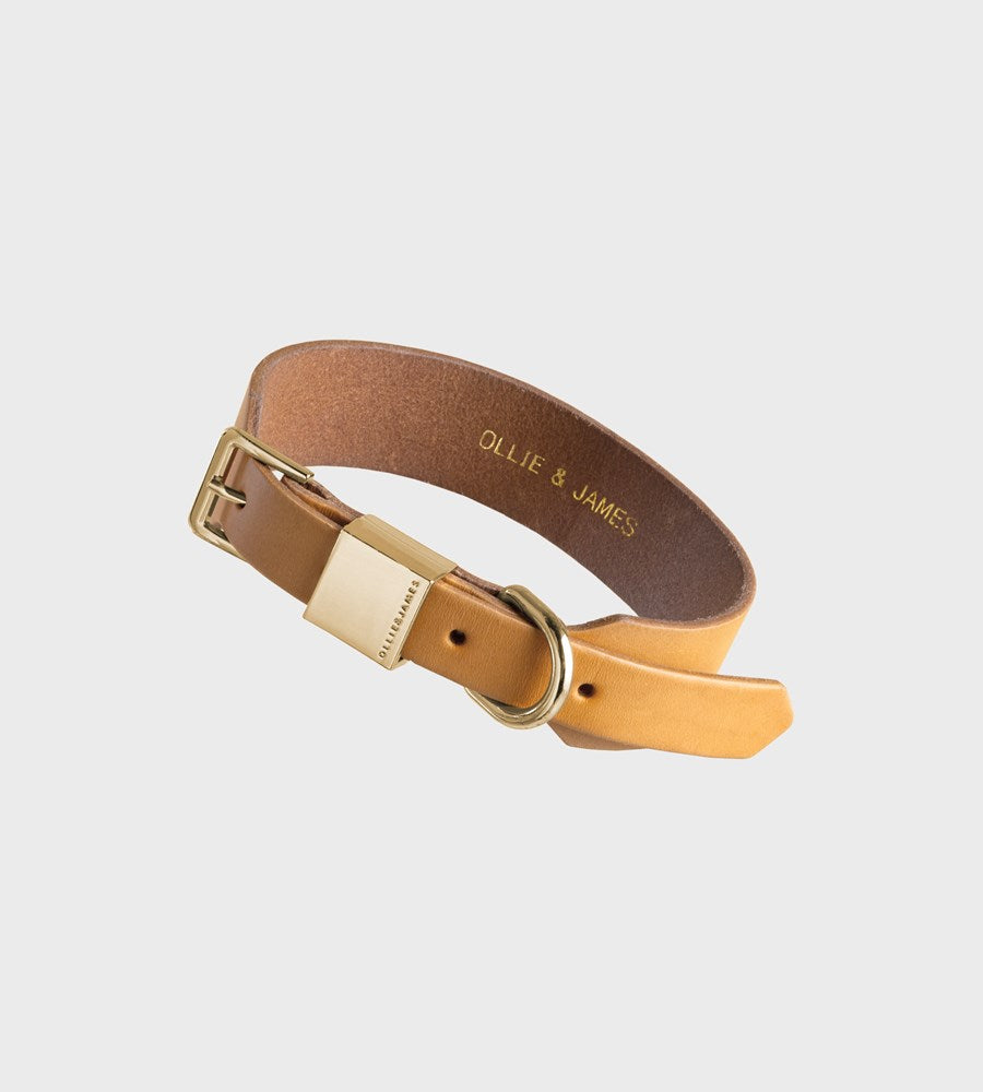 Ollie & James | Leather Dog Collar | Camel