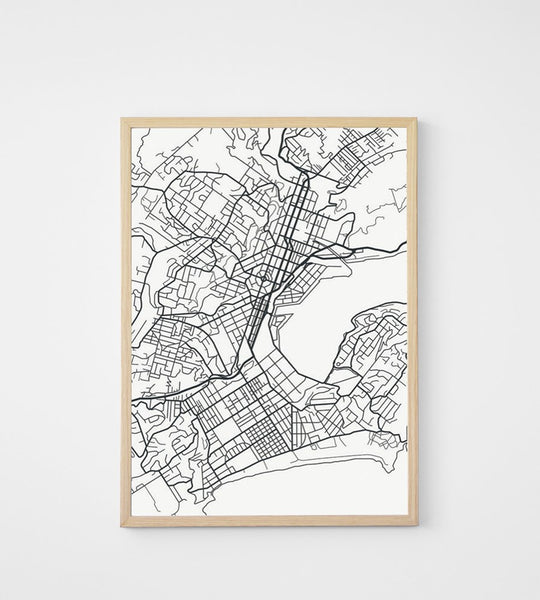 Poster | Map of Dunedin | 50 x 70 cm