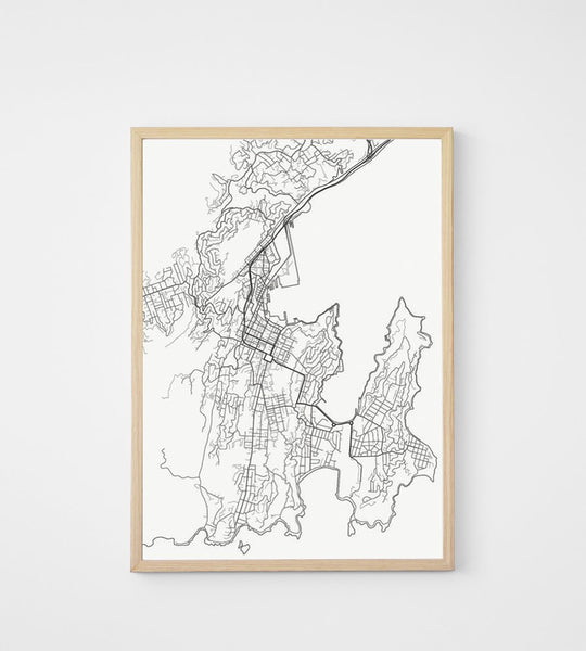 Poster | Map of Wellington | 50 x 70cm