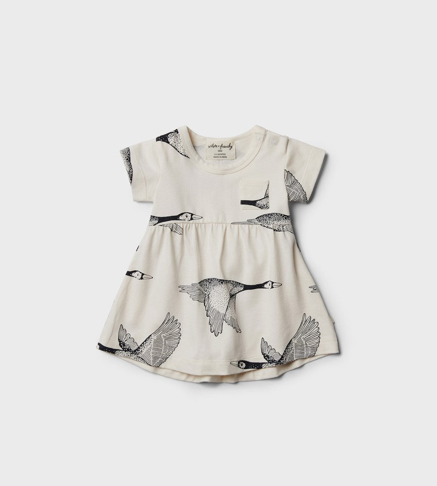 Wilson & Frenchy | Dress | Lets Fly Away