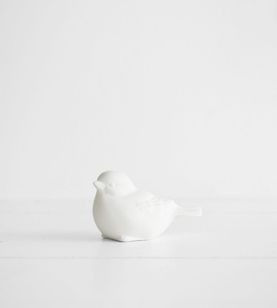 Robin Bird | White