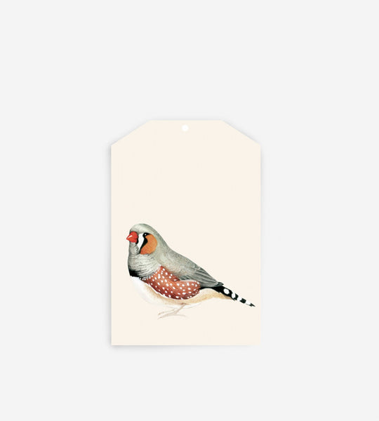 Father Rabbit Stationery Gift Tag | Birds