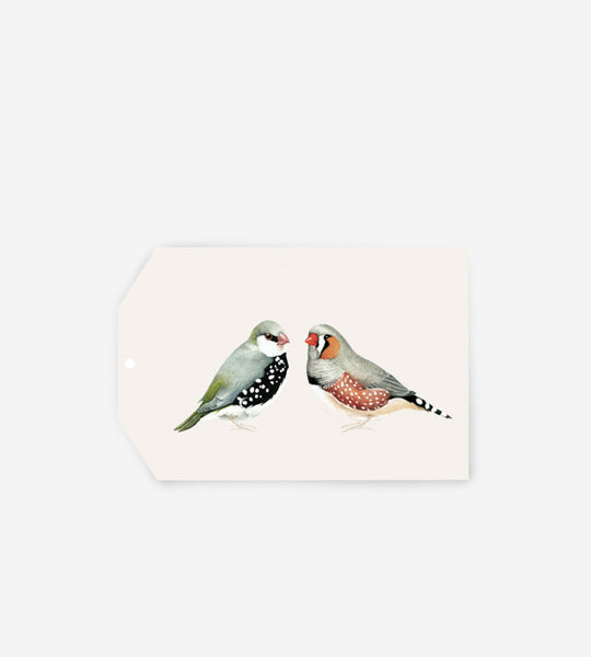 Father Rabbit Stationery Gift Tag A Couple of Birds
