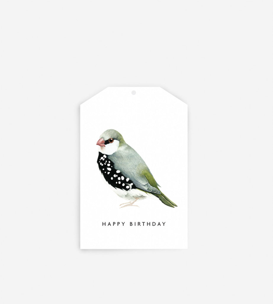 Father Rabbit Stationery Gift Tag | Happy Birthday Bird