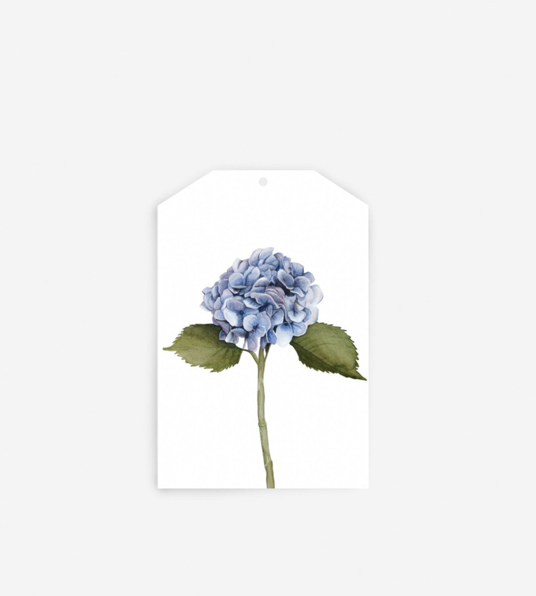 Father Rabbit Stationery Gift Tag Hydrangea