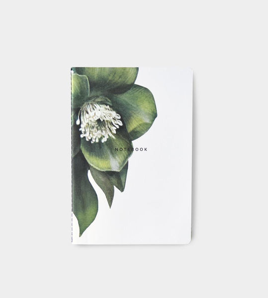 Father Rabbit Stationery | Notebook | Hellebore