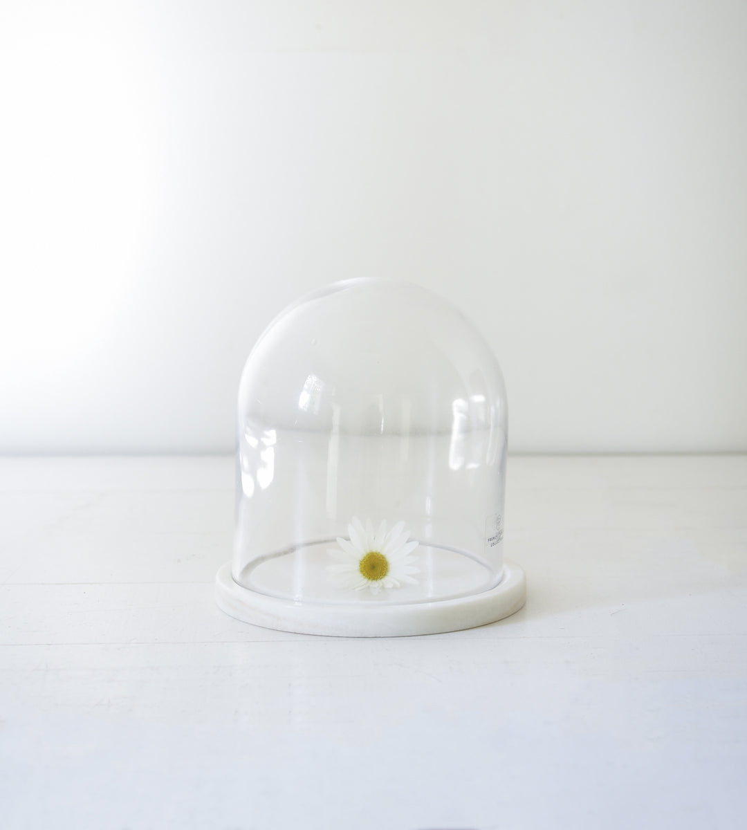 Marble Base Dome