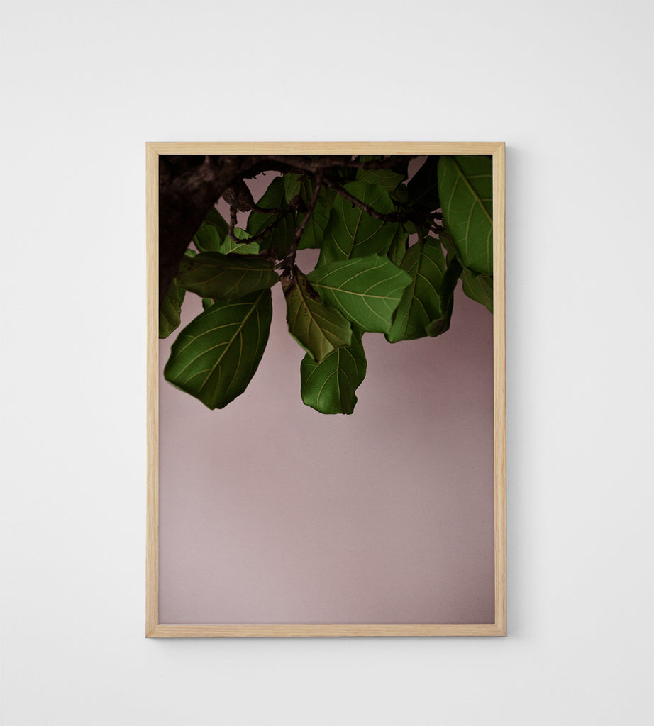 Paper Collective | Green Leaves