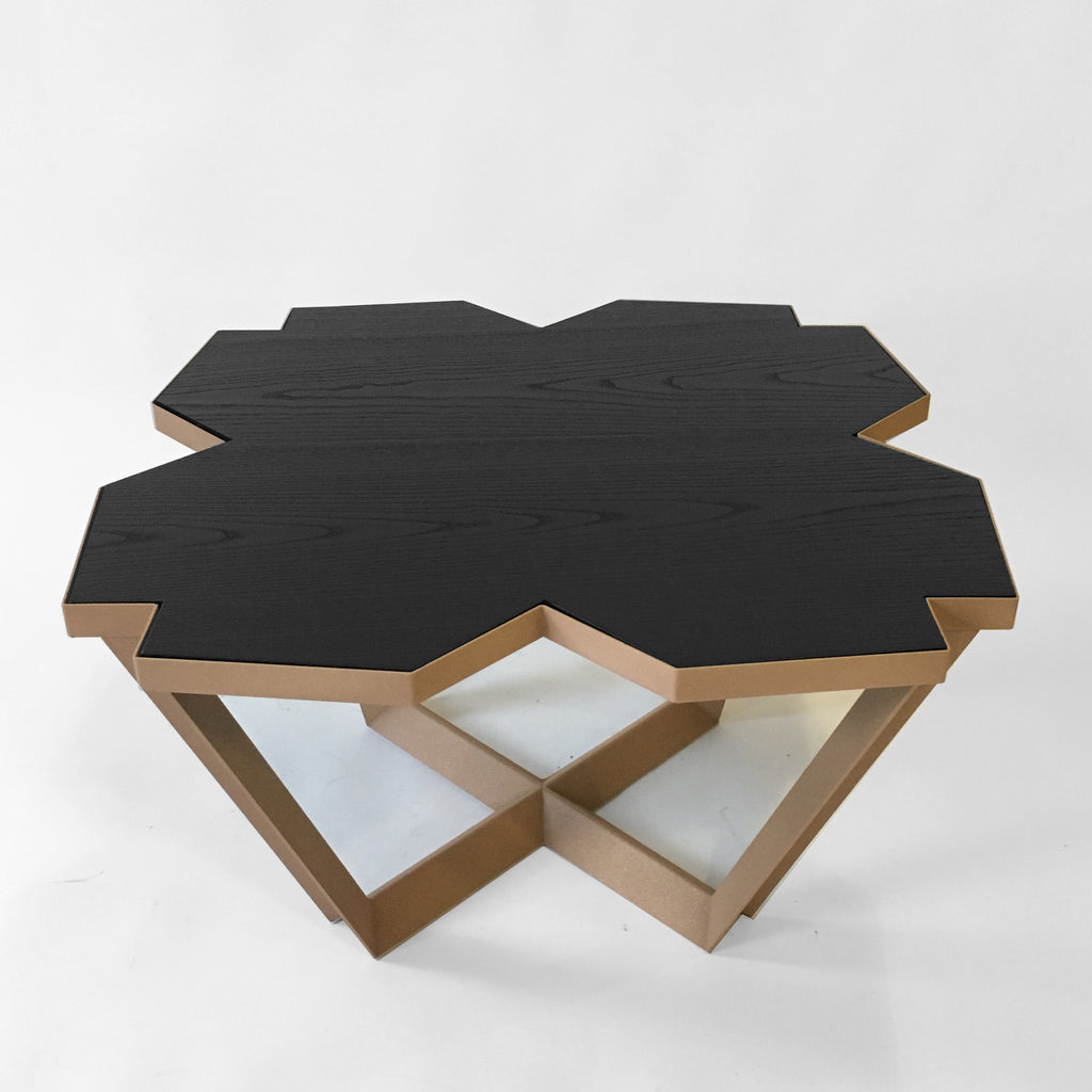 Sale #33 - Echo Coffee Table