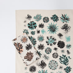 Succulent Tea Towel - Aloe