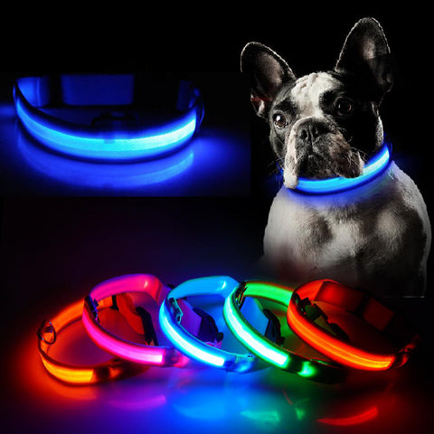 LED Dog Collar - Lifesaver